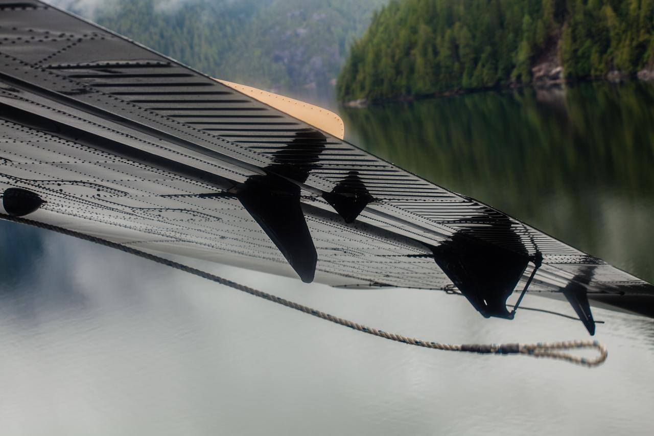 The Misty fjords
